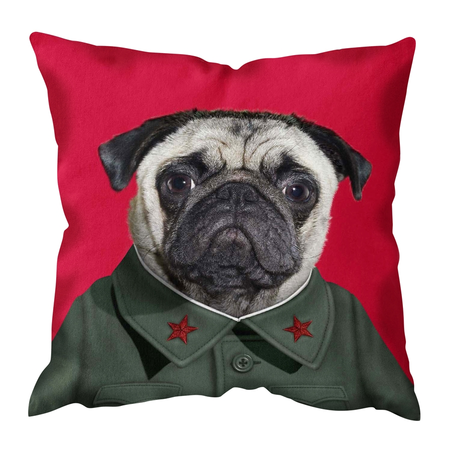 China Cushion Cover
