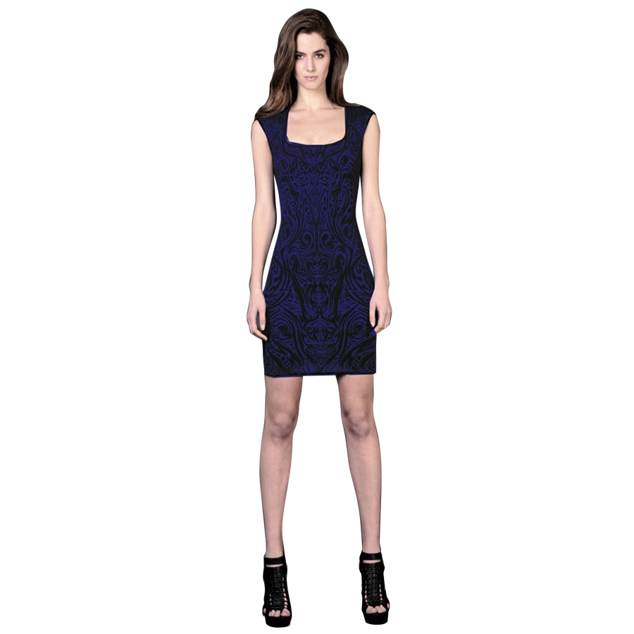 Phoenix Embroidered Jacquard Dress